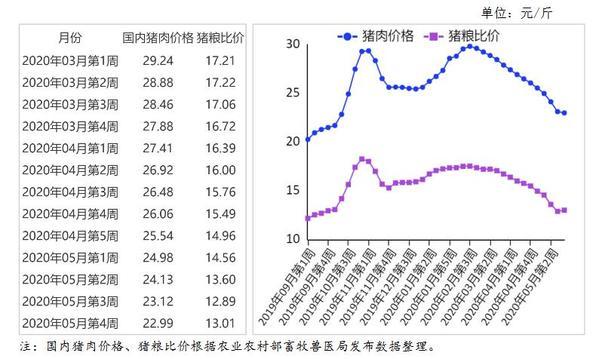 6月猪肉价格同比上涨81.6% 生猪供应逐渐恢复(图)