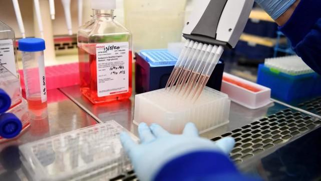 """抗疫合作也要""""脱欧"""":英国拒绝加入欧盟新冠疫苗计划"""