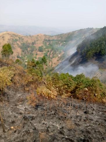 布隆迪局部爆发山火
