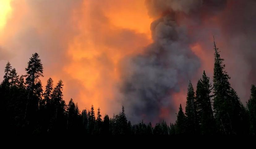 美国加州山火严重 周末高温加剧火势