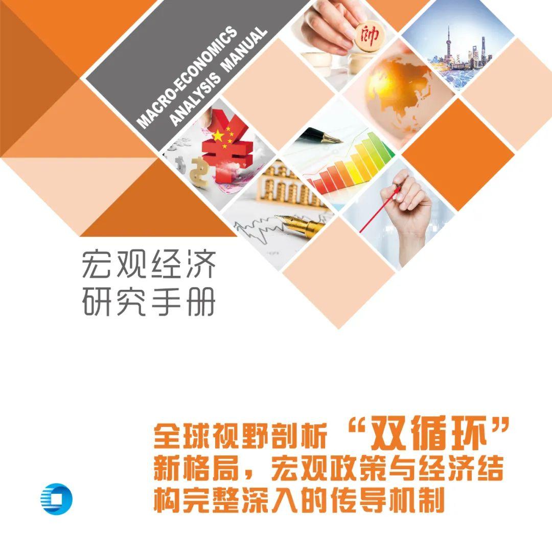 宏观经济研究手册2020