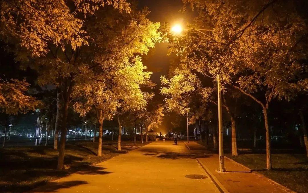 晚安故事 | 黑夜里温暖你的烛火图片