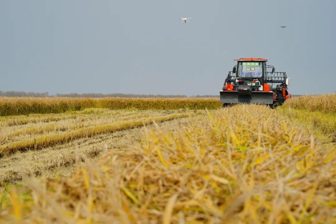 未来农业来了,碧桂园无人化农场演示成果让人震撼