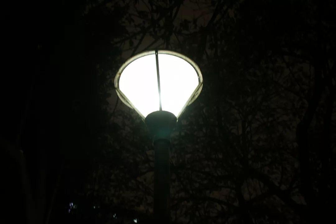 今夜, 石大为你留灯!图片