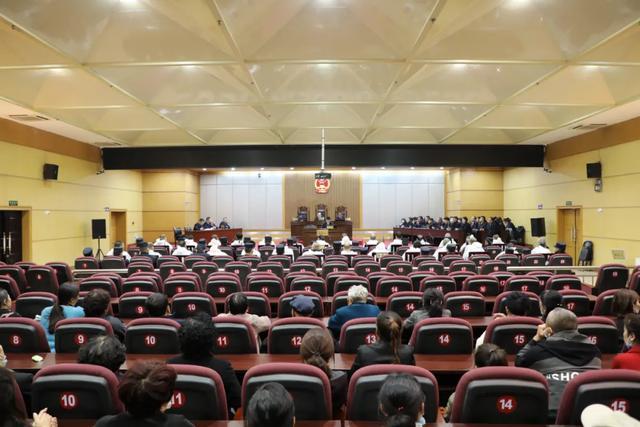 【扫黑除恶】李林军等28人涉黑案一审宣判图片