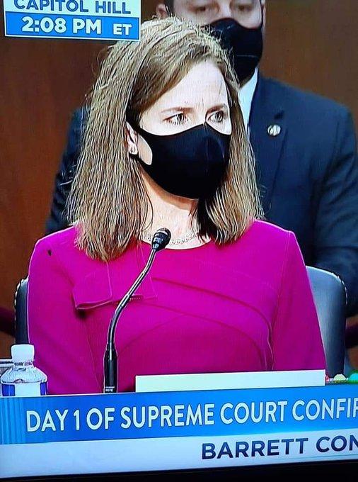 美最高法大法官提名听证会 也被苍蝇抢了风头