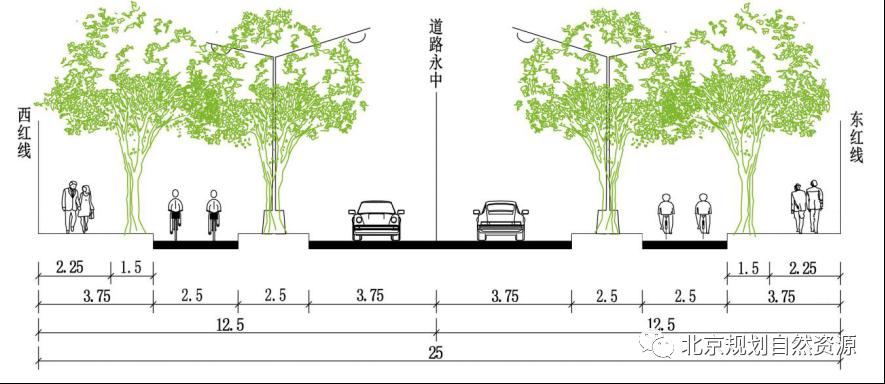 北京发布《步行和自行车交通环境规划设计标准》 2021年4月1日实施图片