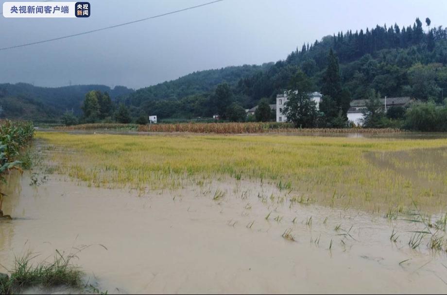 """受台风""""浪卡""""影响 云南将迎强对流天气图片"""