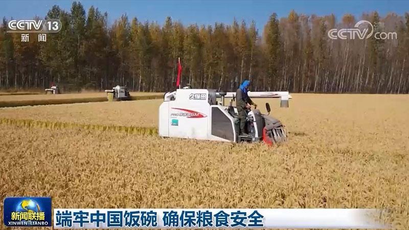 端牢中国饭碗 确保粮食安全图片