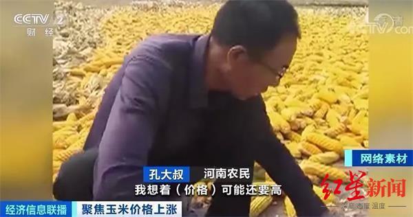 玉米涨价!每公斤涨超1元 创下近4年来新高图片