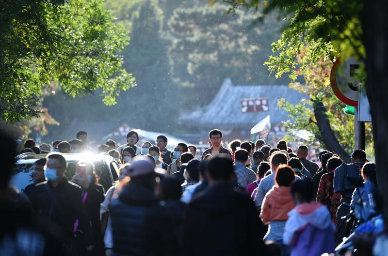 昨三万人香山赏红迎首个游览高峰 最高峰预计出现在下周末图片