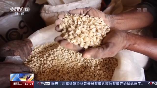 坦桑尼亚村民:中国技术让我们过上了好日子