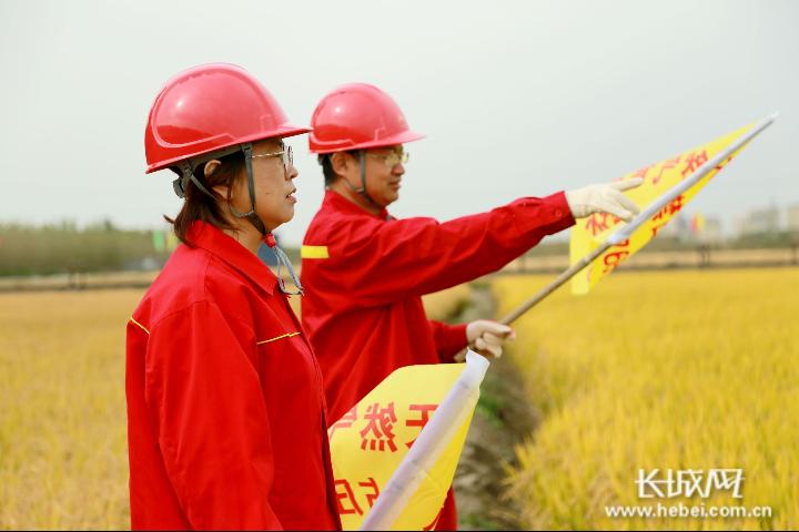 河北唐山:冀东油田天然气冬供进入倒计时准备