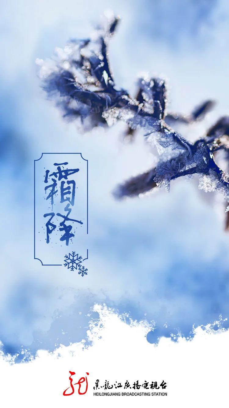 今日霜降 | 秋将去  露成霜图片