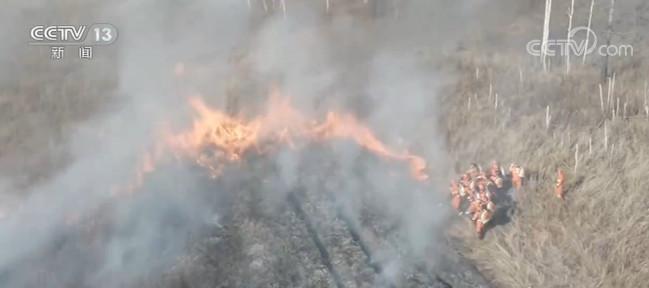 大兴安岭:消防点烧防火阻隔带 预防森林火灾图片