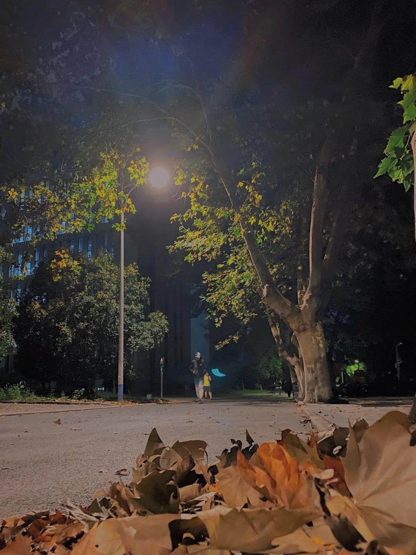 上灯了,你在哪处灯光下熠熠生辉?图片