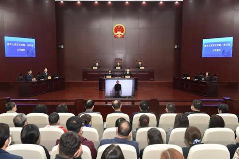 武军定受贿、贪污案一审宣判图片