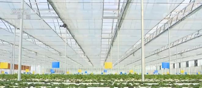 """""""十三五""""农业农村发展取得历史性成就 农业基础设施建设明显改善图片"""