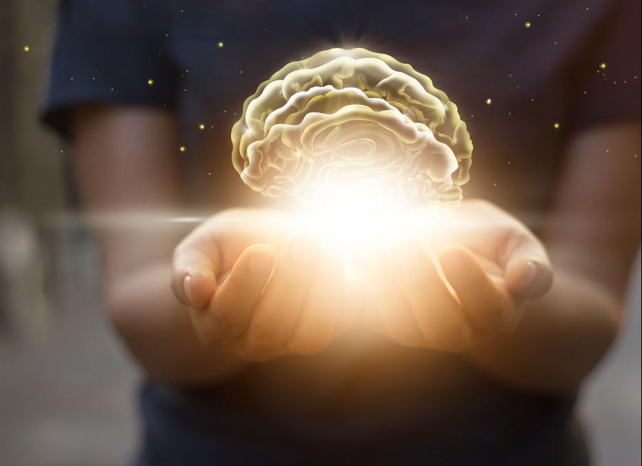 研究 | 经管学院教授研究发现错误记忆的合理性图片