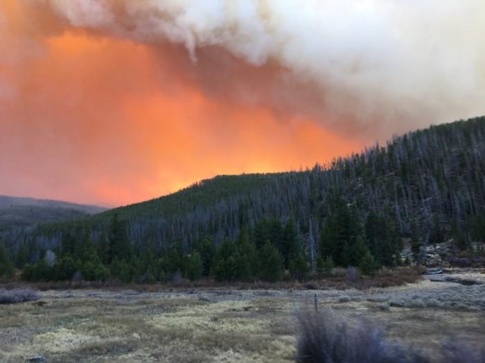 科罗拉多州曾被甲虫侵袭的森林正被创纪录的山火吞噬