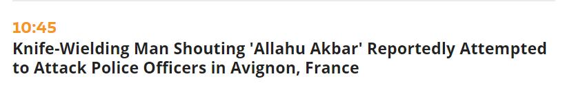 又一起!法国发生袭警事件 嫌犯已被击毙