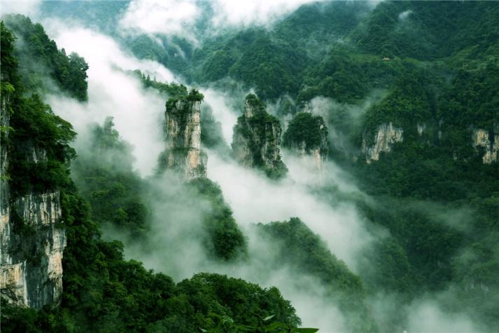 药苑出游攻略,畅游南京的快乐统统拿下图片