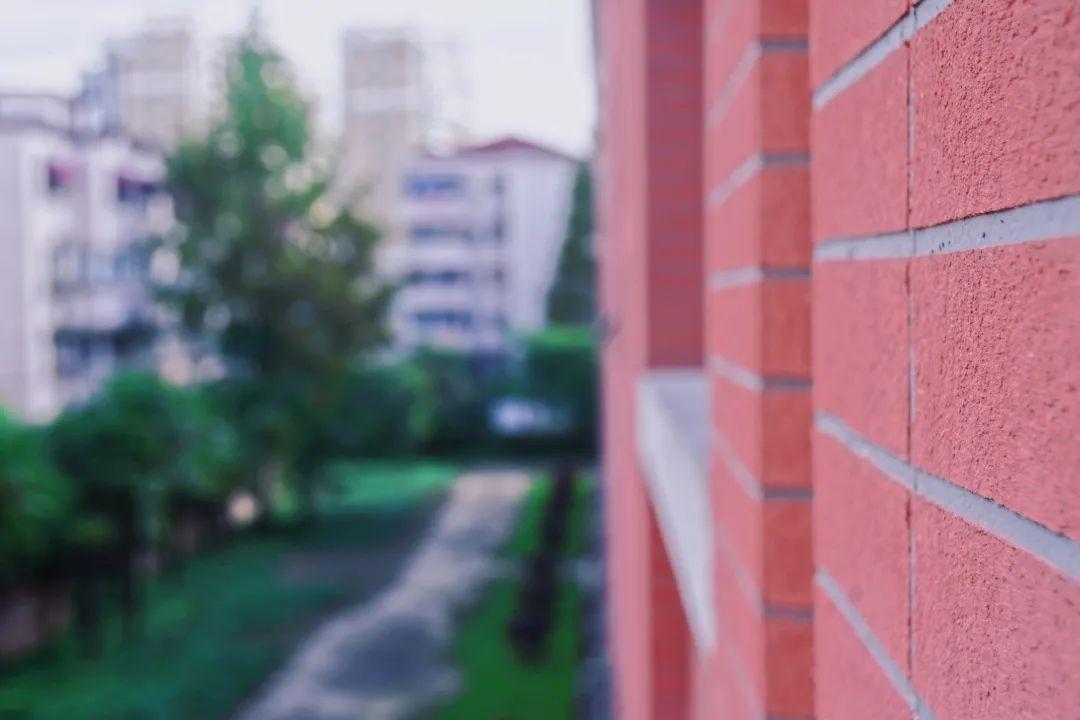 光影说 | 东华人摄影作品秋季上新啦!图片