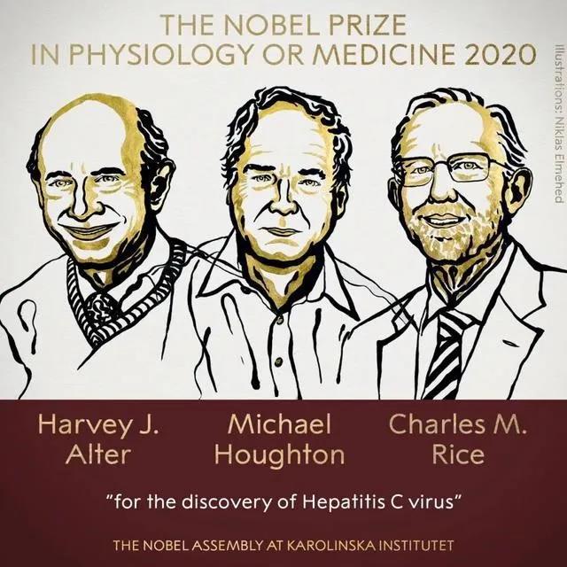2020诺贝尔生理学或医学奖为何颁给这3人?丨新闻背后图片