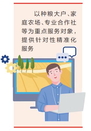 让技术长在泥土里 河南省启动科技特派员服务麦播专项活动图片