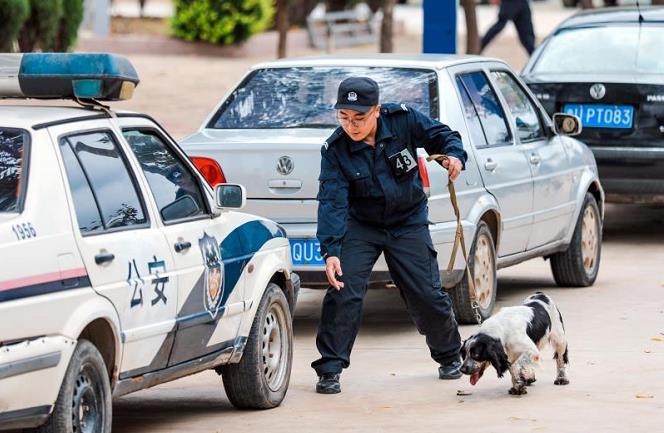 全国铁路公安机关开展警犬搜爆战训比赛提高实战水平图片