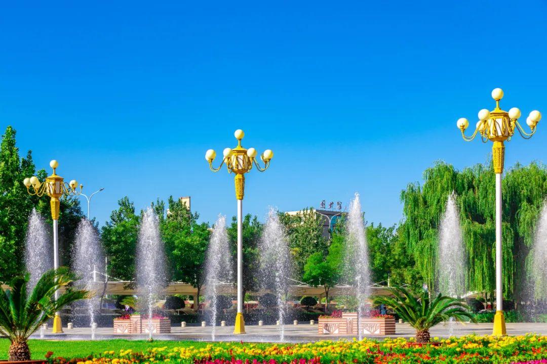 喜报!宁夏大学2020年度国家基金项目立项数再攀新高图片