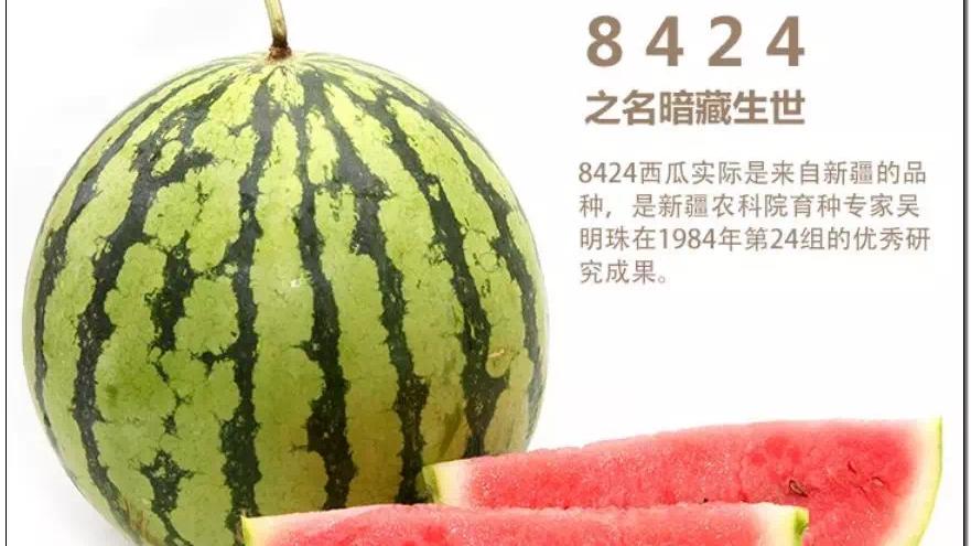 """▲图依次为黑眉毛、郁金香甜瓜、""""蜜瓜皇后""""、麒麟西瓜"""