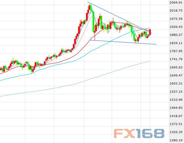 美元见顶信号提振多头信心 黄金连破三大关口大选前命系股市前景
