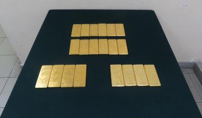 香港海关检获71公斤怀疑走私黄金 市值约3500万港