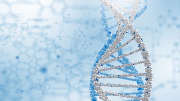 基因编辑、抗结核新药等成果入选2019年度中国生命科学十大进展图片