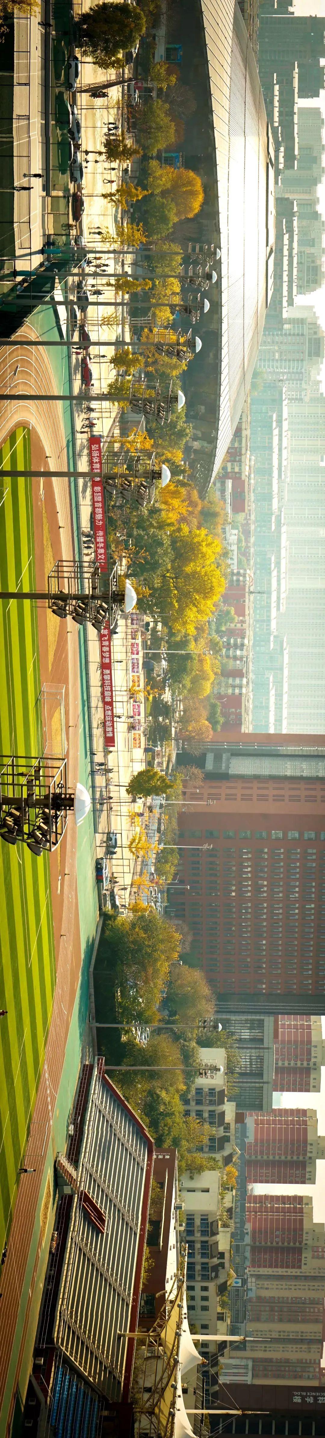 这个秋天,60岁的北工大有亿点美…图片