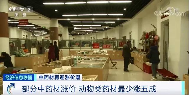 中药材涨价潮来袭:牛黄已涨至20多万元1斤 发生了什么?