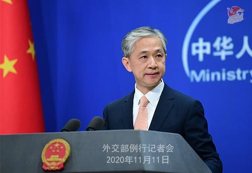 2020年11月11日外交部例行记者会(全文)图片