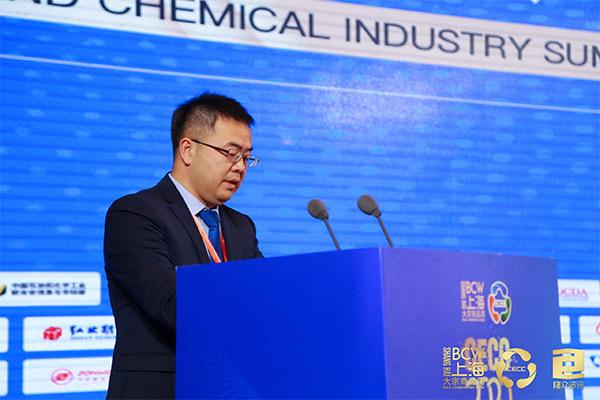 中国石油和化学工业联合会信息与市场部副主任范敏主持2020中国能源化工产业峰会