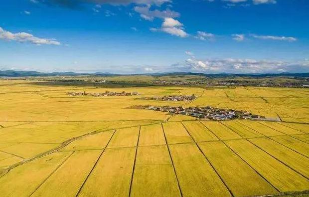 现代农业—世界领先的6大新模式!