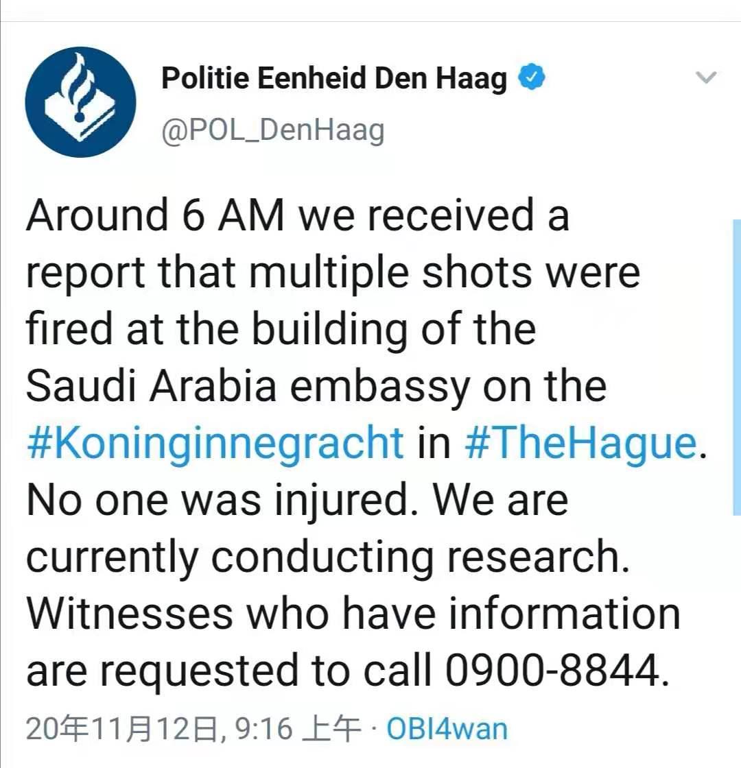 沙特驻荷兰使馆建筑突遭枪击 暂未有人员伤亡消息