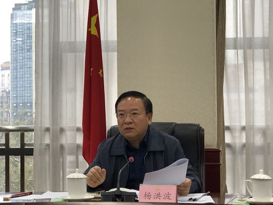杨洪波副省长组织研究四川省级百强中心镇考核验收有关工作