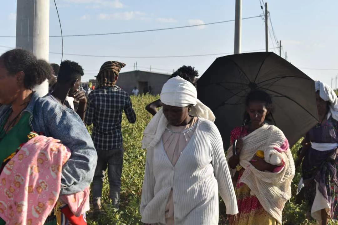 超11000名埃塞俄比亚难民涌入 苏丹部署建造难民营