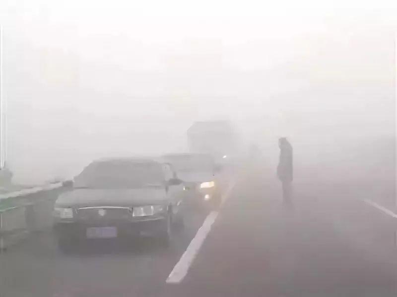 秋冬雾天行车,你不能不知道...