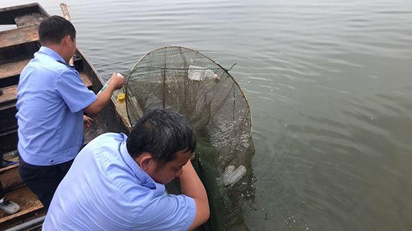 """江西南昌县:做实做细""""禁捕""""保护河域生态平衡"""