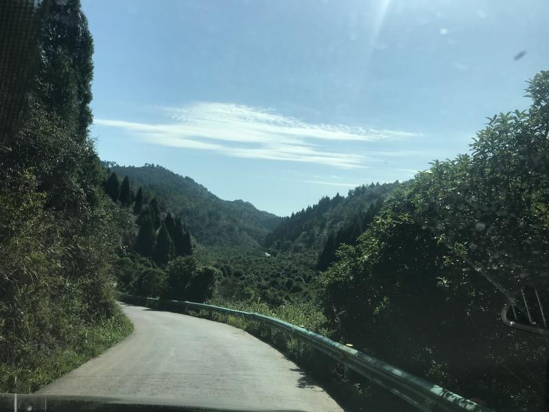 县施秉从塘到翁城村公0多2山的盘里本路基公宽这么都。