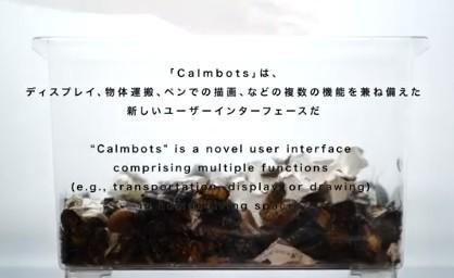 筑波大学研究人员发明赛博蟑螂 蟑螂秒变家政小能手