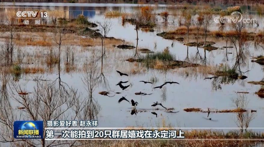 节水调水保水治水 北京水生态持续向好图片