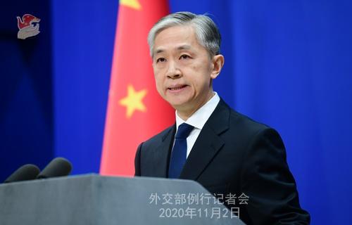 2020年11月2日外交部发言人汪文斌主持例行记者会图片