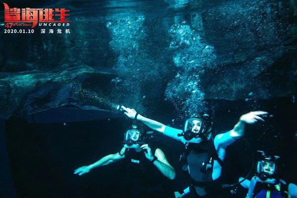 《鲨海逃生》揭晓四大精彩看点 群鲨高能来袭热血沸腾危机重重全程惊心动魄